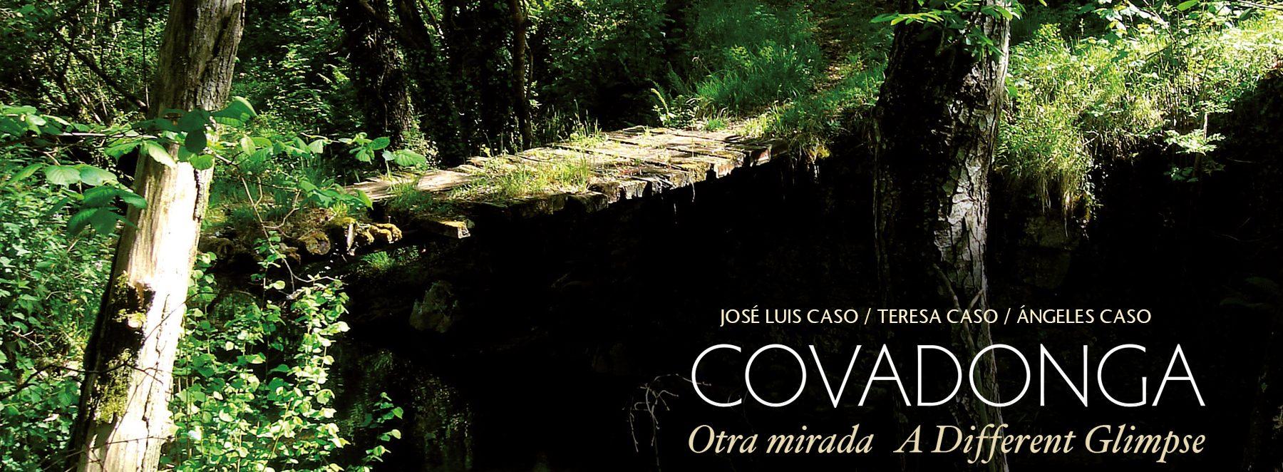 Covadonga-otra-mirada